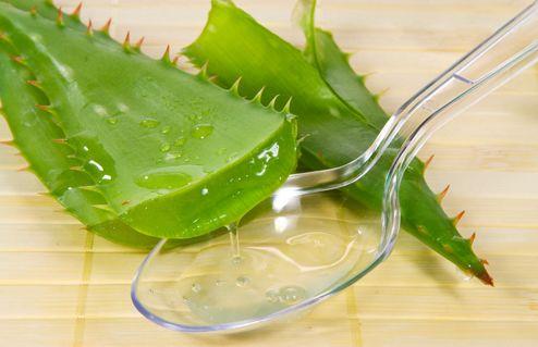 蘆薈外敷有什麽功效,蘆薈日常護膚的正確處理方法 第1张