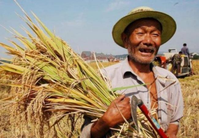 在外國人看來,中國人的勤勞實在是太可怕了 第3张