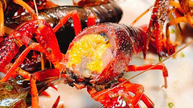 吃小龍蝦時都要把頭全部撇掉,看下蝦頭都有哪些器官 第3张